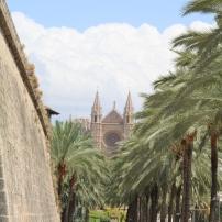 vue sur la cathédrale de Majorque